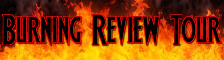 Burning Review Tour Banner - Long